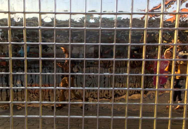 Animals In Captivity Backgrounds Cage Close-up Day Fence Full Frame Glass Stones Mammal Nature No People Zoo