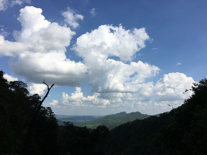 Beauty In Nature Cloud - Sky Day Growth Landscape Mountain Nature No People Outdoors Scenics Sky Tranquility Tree