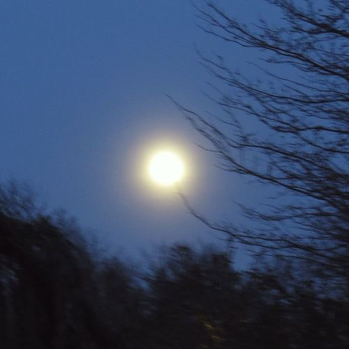 Moon Fullmoon Bewitching Nightowl Midnight