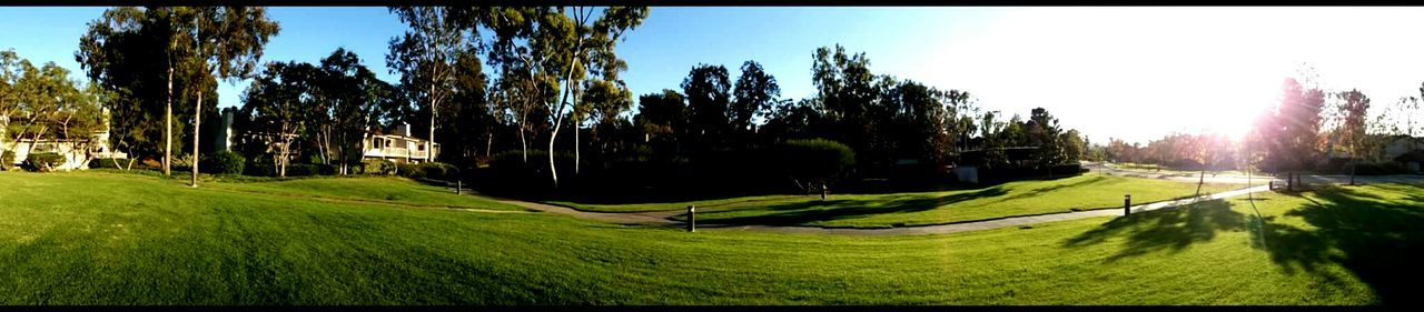 Turtle Rock Residential Neighborhood Southern California Irvine (UCI)
