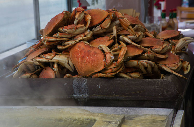 Ready for Dinner California Cooking Crab Dinner Fishermanswharf Orange Sanfrancisco Seafood