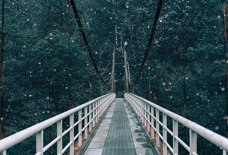 Empty footbridge against trees in forest during snowfall