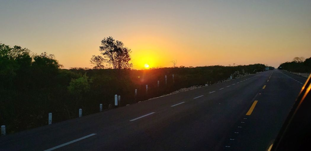 The Mobile Photographer - 2019 EyeEm Awards Tree Sunset Rural Scene Agriculture Dawn Sunlight Sun Business Finance And Industry Road Panoramic