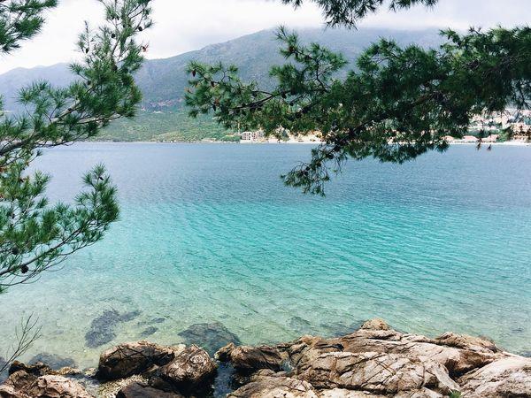 Croatia Croatian Holiday Holiday Travel Vacations Cavtat  Cavtat , Croatia Sea Summer Summertime Swimming Sailing Relaxing Romantic Water Beauty In Nature Nature No People
