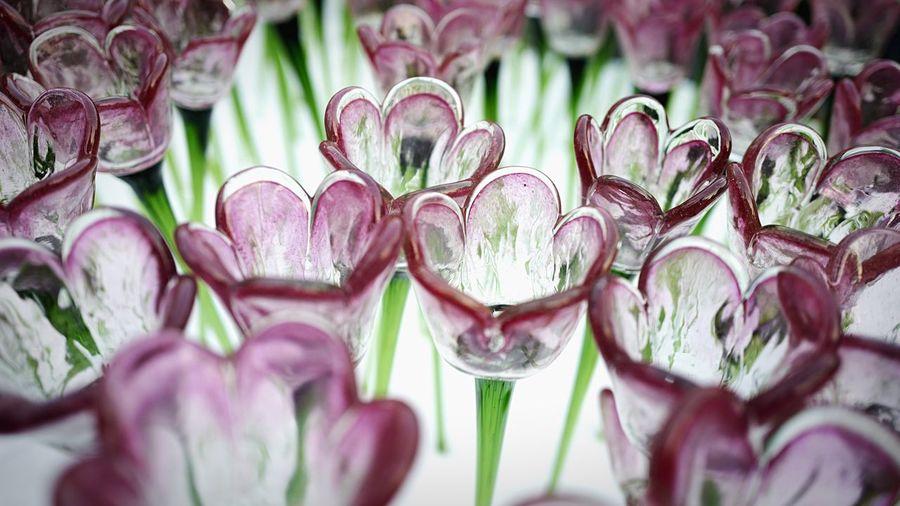 Glass Flower Pink. HongKong Discoverhongkong Leica Leicaq Glass Flower Collection New Years Resolutions 2016 EyeEm Best Shots EyeEmBestPics Eyeemphotography EyeEmBestEdits