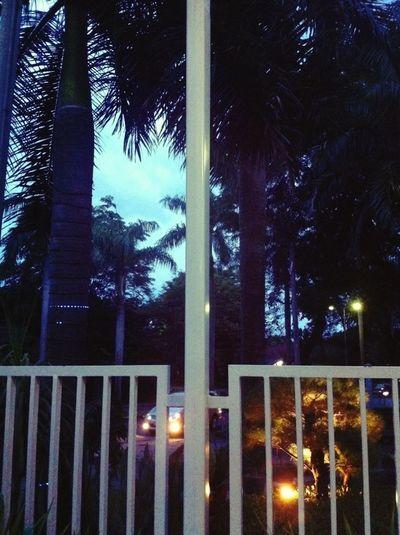 Great Views Evening Evening Sky Cafe