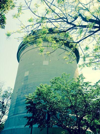 時をかける少女 想い出 公園 映画 ロケハン 野方給水塔。建築マニアには知られた場所も、保育園生の僕の遊び場だった。 Movie Location