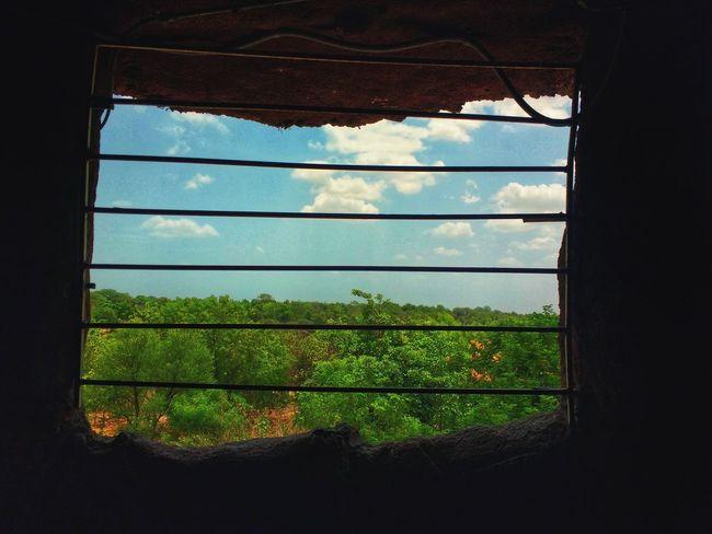 Window Sky Close-up Grass Cloud - Sky