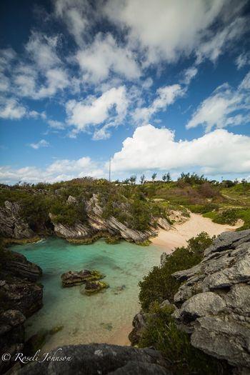 Jobsons Cove,
