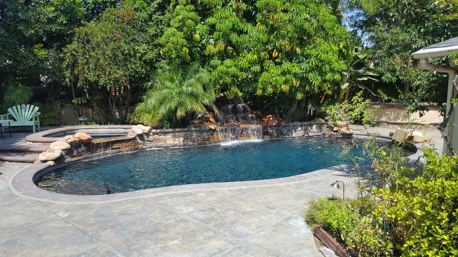 Share The Joy Salt Water Pool Dream Life Pet Sitting Do You See What I See?