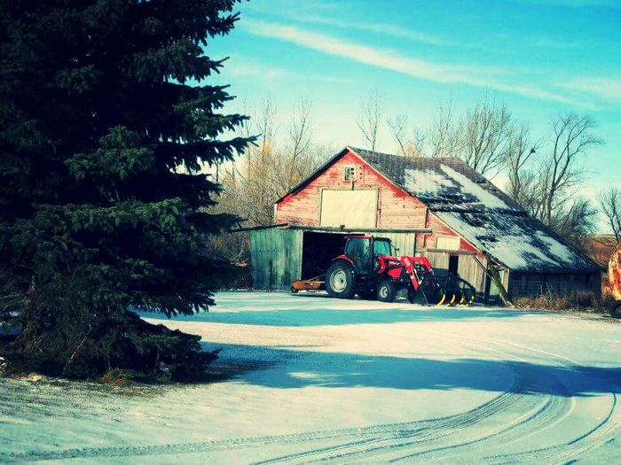 Barn Brrr Cold Cold Temperature Cold Work Farming North Dakota Crisp Winter Sky Day Freezing !!!! No People Obsolete Outdoors Tractors Weather Winter Wood Wood - Material Wooden Work Working