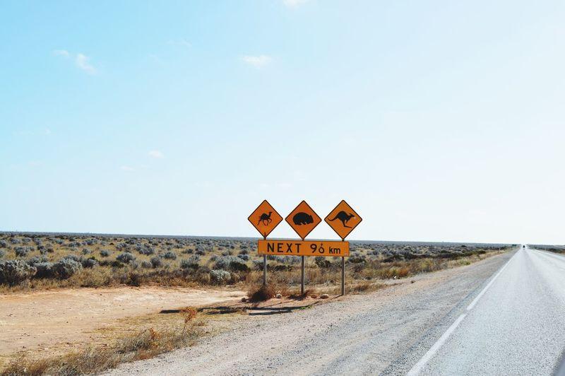 Animal crossing signs by road against sky