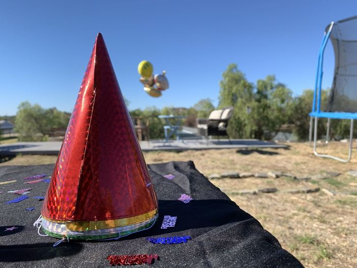 Close-up of hat against trees on field against sky