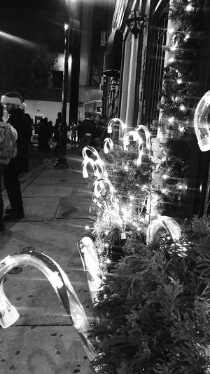 Night Illuminated City Street Christmas Decoration Christmas Lights Motion Christmas Outdoors Building Exterior Celebration Built Structure Nightlife Neon Holiday Spirit Gayborhood Phildelphia People Large Group Of People Tradition Light And Shadow Crowd City Life In The city 📯Philly..Christmas Eve...