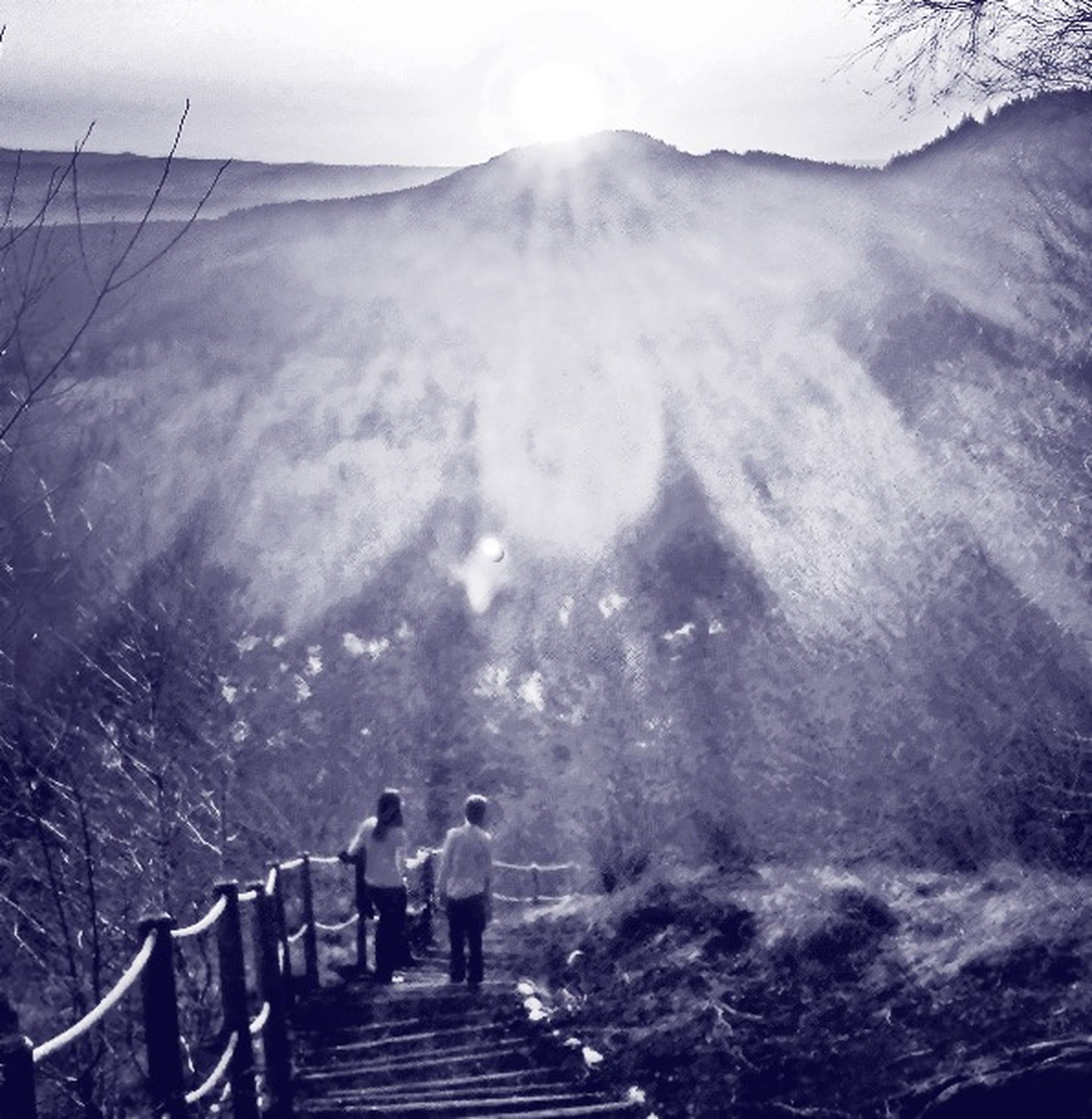 mountain, fog, lifestyles, railing, foggy, men, steps, tranquility, leisure activity, weather, scenics, tranquil scene, nature, winter, beauty in nature, tree, the way forward, person, tourism