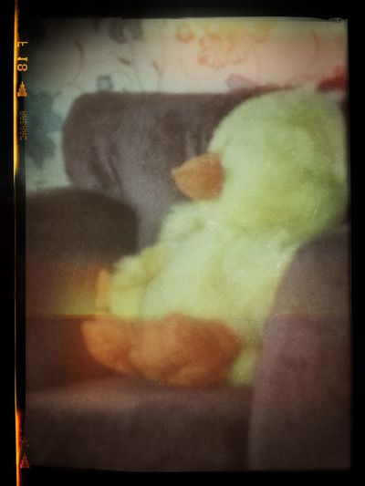 Taken By My Little Girl.5yrs Of Age Galaxy S3&google+ Cuddlytoy Home Sweet Home