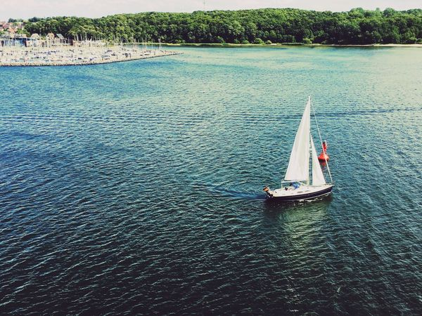 Ocean Water Nautical Vessel High Angle View Sea Nature Transportation Day Scenics Tranquility Mode Of Transport Tranquil Scene Outdoors Vacations Beauty In Nature Sailing No People Sailboat Tree Yacht Sky