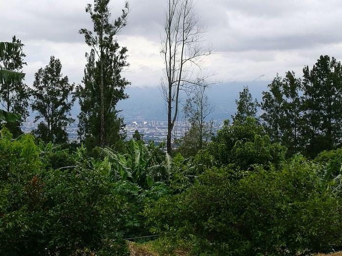 San Jose Desde La Montaña