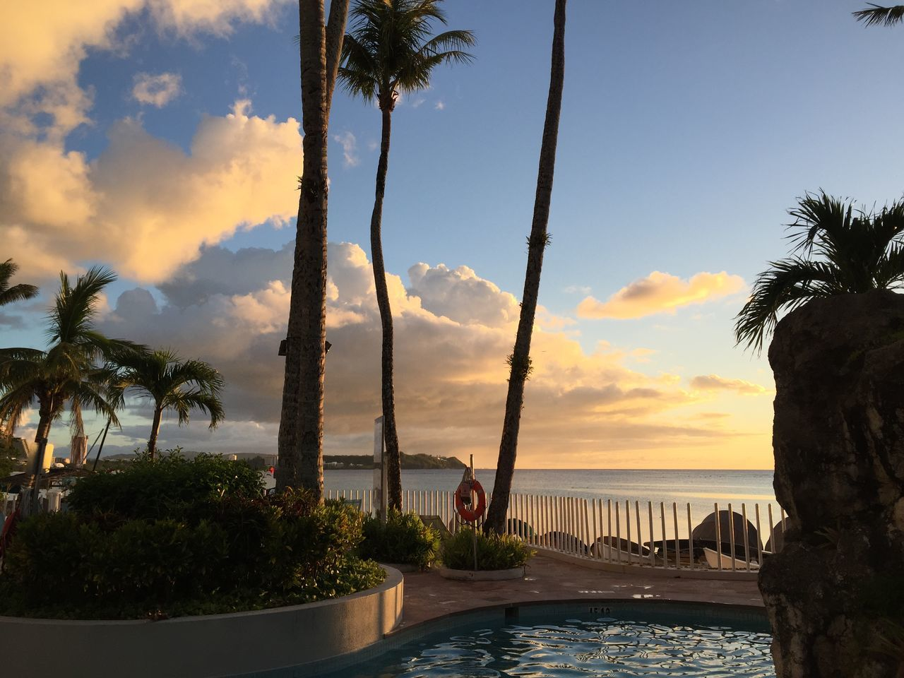 palm tree, tree, sky, water, cloud - sky, sea, beauty in nature, nature, sunset, scenics, swimming pool, tranquility, tranquil scene, horizon over water, beach, no people, tree trunk, growth, outdoors, day