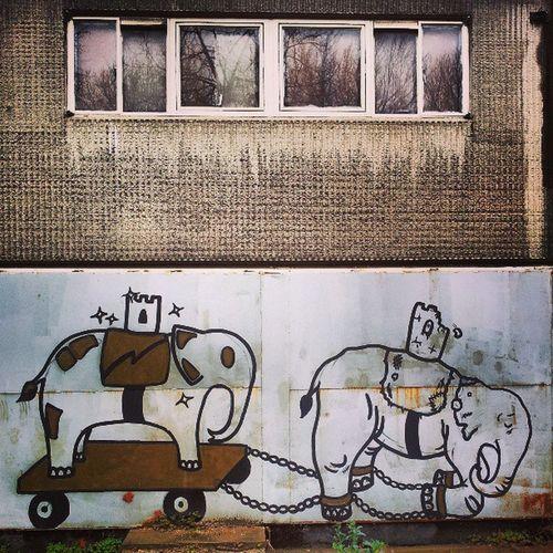 Heygate Heygateestate Heygategraffiti Heygateestategraffiti elephant elephants elephantandcastle reflection reflections