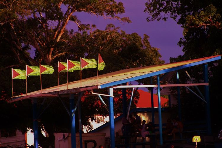 Guyana Flags in a row Travel Destinations Flags Guyana Bartica Vivid EyeEmNewHere Country Simple Goldenbeach Inarow Arts Culture And Entertainment Night Rollercoaster Amusement Park People Lifestyles Outdoors Multi Colored Tree