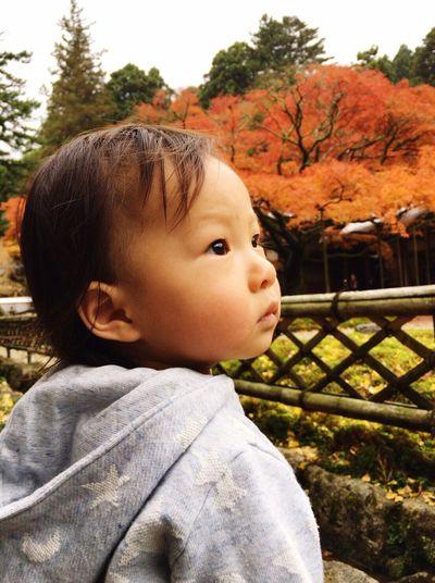 甥っ子 Real People One Person Childhood Focus On Foreground Tree Outdoors Lifestyles Baby