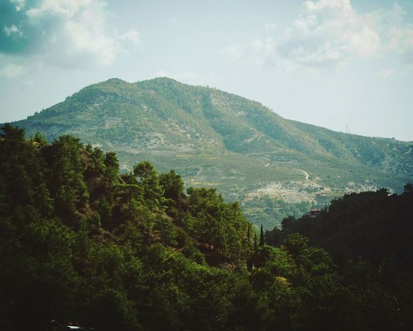 Traveling Mountain Tree Sky Nature Landscape Beauty In Nature Mountain Range Green Color Growth No People Day