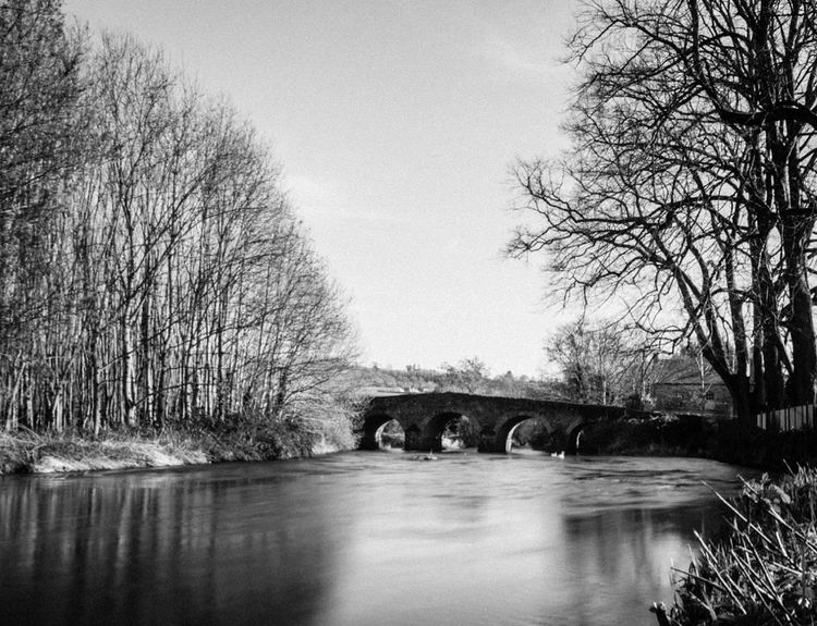 Clonegal Village, Co Wexford, Ireland. Black And White Black & White Eye4photography  EyeEm Gallery Sky Water Tree Animals In The Wild Nature Animal Themes No People Outdoors Day Animal Wildlife Bare Tree Mammal EyeEm Composition Popular Photos Photooftheday Nikon EyeEm Best Shots Long Exposure Ireland River