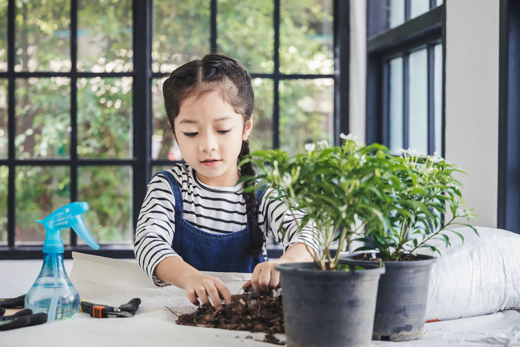 Boy looking at potted plant on table