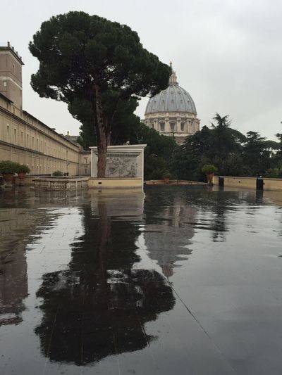 Italy Reflection Rome Tranquil Scene Tranquility Tree Tree Vatican Vatican Museum The Week On EyeEm