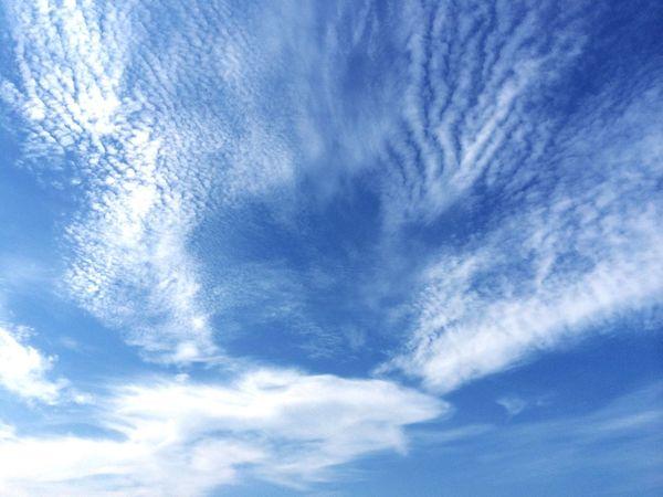 雲 Check This Out Japan Photography Clouds And Sky Nature Photography EyeEnNatureLover Sky_collection Sky Nature_collection Blue Blue Sky Bluesky