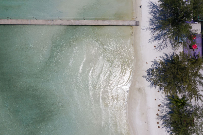 High angle view of sea by trees