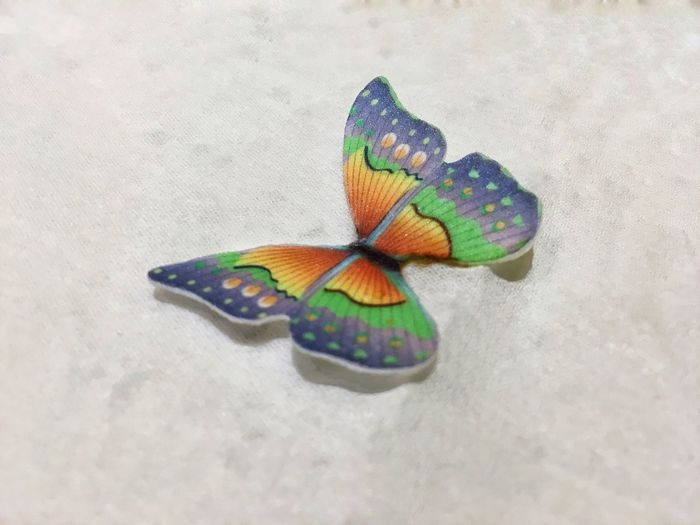 Butterfly Rainbow Colors Rainbow Multi Colored Art And Craft Creativity High Angle View No People Close-up Craft Butterfly - Insect