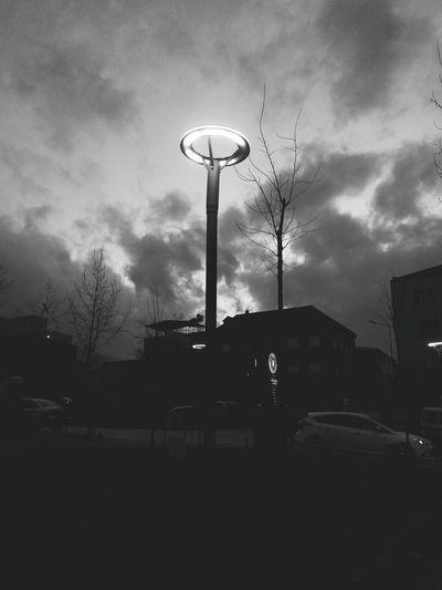 Nice Atmosphere Blackandwhite Hugging A Tree Good Night ı'm Happy