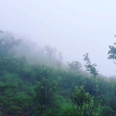 Misty as it gets...