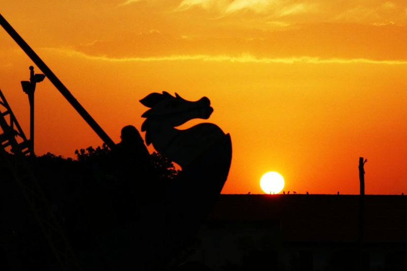 Dragonballz Sunset Yellow Color Sky Chilout Share Your Adventure Dragon Dragonfly_of_the_day