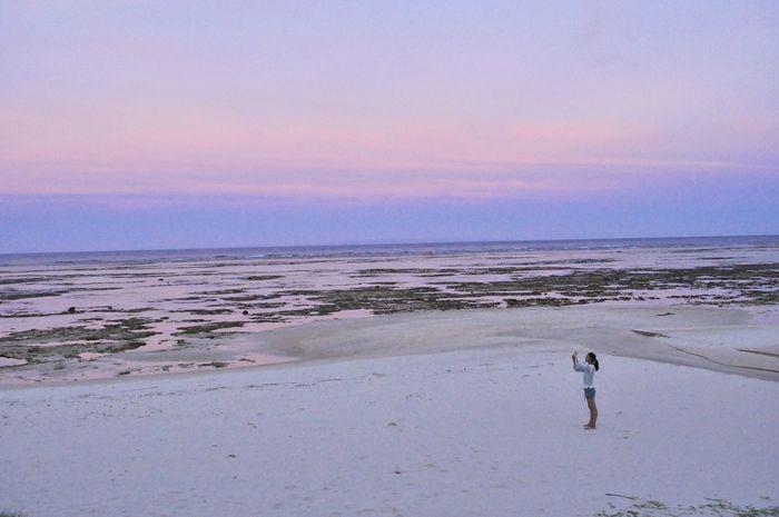 Sunset Pink Blue Seeside