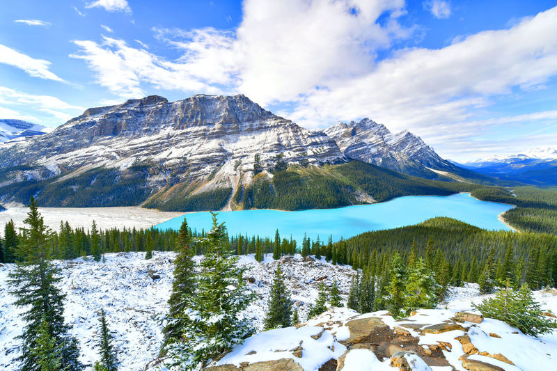 View from Bow Summit of Peyto lake in, Canada Mountain Scenics - Nature Beauty In Nature Snow Cold Temperature Winter Tranquil Scene Tranquility Mountain Range Environment Non-urban Scene Idyllic Snowcapped Mountain Nature Landscape Tree Outdoors Mountain Peak Formation Banff National Park  Peyto Lake Bow Summit Lake Canada Alberta