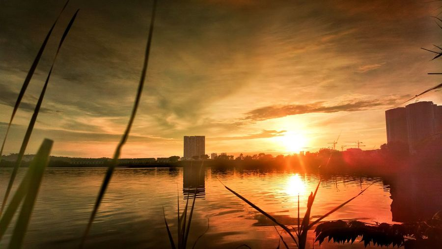 Sunrise Reflection Sky Cloud - Sky No People Suburban Exploration Outdoors Nature Lake Scenics Tree Built Structure Sun Water Infinity ∞ Yellow Golden Hour Blurr Grasses At Foreground