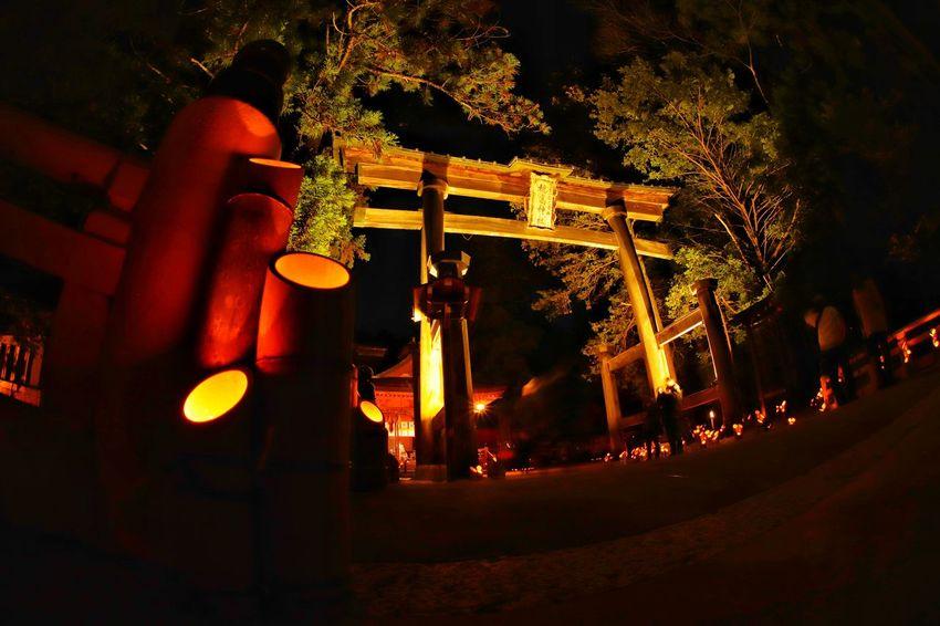 ローアングルが好き😆 Night Outdoors Illuminated No People Architecture 神竹灯 Close-up Japanese Temple Japanese Culture おはよう~天気悪💦😅