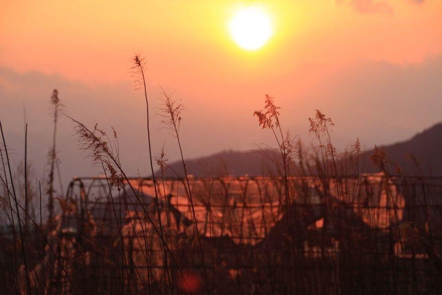 いつかの空 夕焼け Sunset