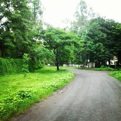 Gmcs Campus College Beauty Green