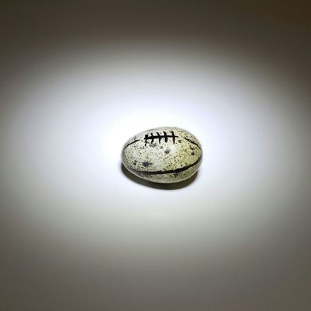 Super Bowl 2017 Sb51 Superbowl Houston Houston Texans Texas NRG Nrg Stadium NFL Stadium Football Ball USA Touchdown Ladygaga Quail Eggs Quail Egg Bird Cute Fun Photo Belanglose Bilder Unaffected Images