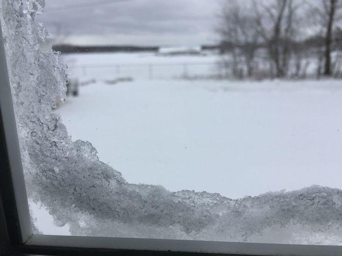 Good morning world! iPhone 6+ Snow ❄ Snow-Day Winter Wonderland Wintertime Winter World Of White