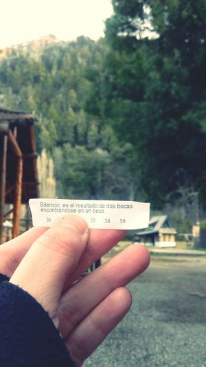 Galleta de la fortuna. Fortune Cookie Woods Mountains Kiss Peace Quiet Silence