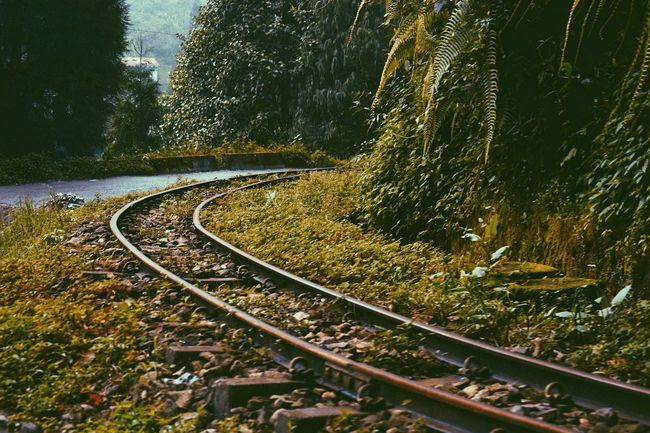 Travel Track Mind Nature Transportation No People Beauty In Nature Tracks Railway Track Visitindia Nikon WestBengal