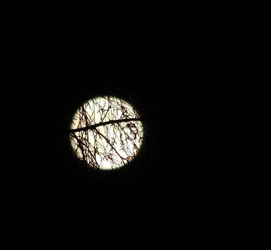Mēness Mēness Moon FoolMoon Nature Photography Nature Nature_collection Showcase: December