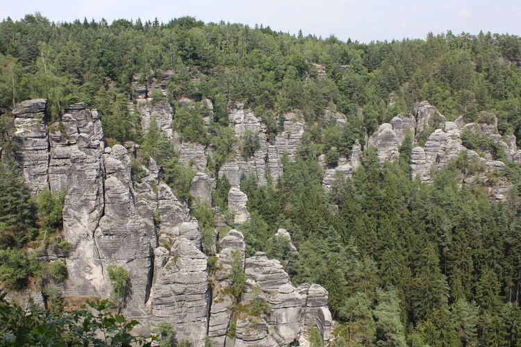 Scenic view of trees and rocks against sky