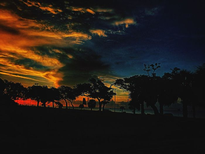 What do you see? Life Camera Photo Dreambig Views Godsbeautifulcreation Capture Godsbeauty Edit Clouds Sand Water Beach World Colors Tree Sky Nature Land Environment Sunset Outdoors