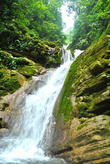 My Country In A Photo Mexico Xilitla Mexican Pride Waterfall Mexigers Somewhere In Mexico Rocks Unreal Place